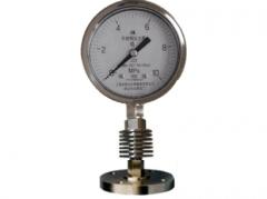 Y-150B-F/SR/MFB/316L带散热器不锈钢隔膜压力表