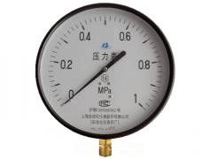 Y-200普通压力表(0-1MPa径向型)