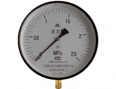 Y-250普通压力表(0-2.5MPa