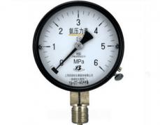 YA-100氨用压力表(0-6MPa径向型)