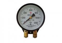 YZS-102双针双管压力表0-1