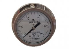 Y-103B-FZ全不锈钢耐震压力表0-25MPa轴向带边型